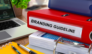 BRANDING GUIDELINE _media_kit_image