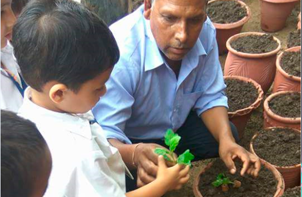Close to Nature – Tree Plantation